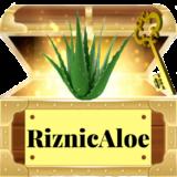 Aloe Vera Riznica
