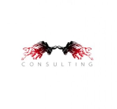 2OX Consulting d.o.o.